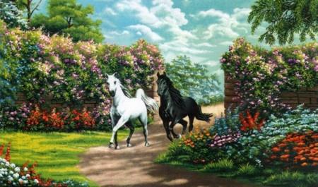Белый и черный - Гобелен