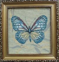 Бабочка 9